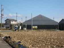 20090110hamamatsu