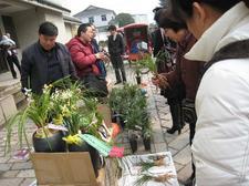 20090228suzhoulanhuazhan011