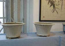 20090228suzhoulanhuazhan022