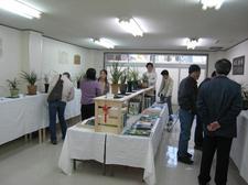 20090320lanhuazhan02