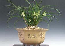 20090322songmei01
