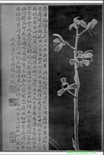 Wuenyuandejiahuamei