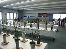 20111203tsu04