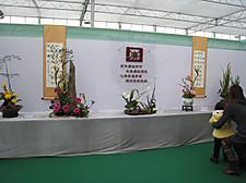 20120219ningbo42