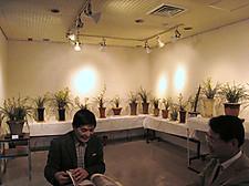 20120421huiyunhui9huazhan01