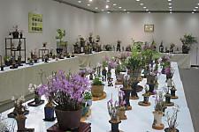 20120512shihuzhan01