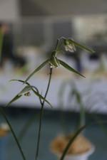 20131214tsuhanzhou01