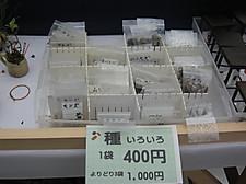 20140111yafengzhan07
