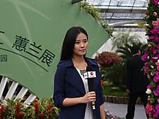 20140412jingjiang01