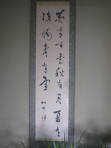 Chunyoubaihua