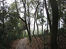 20151227wuyunshan30