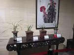 20160222hangzhou0023