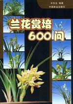 lanhuashangpei600wen